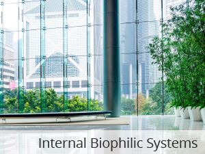 Internal Biophilic Systems