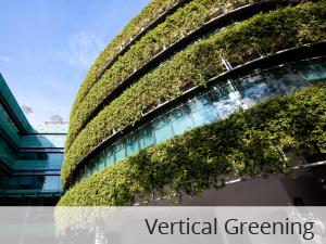 Vertical Greening